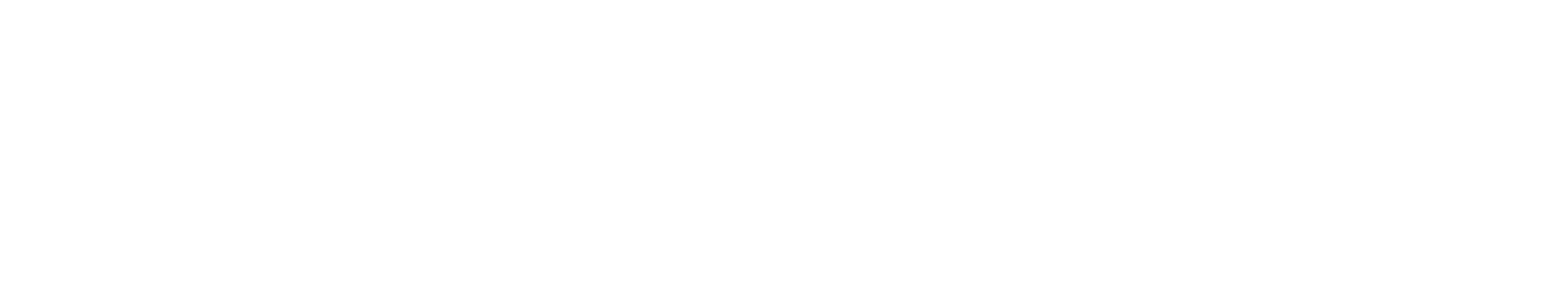 Africa Aviation Executive Services (AAES)